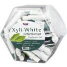 Xyliwhite tandpasta 1 tube til rejsebrug 1 oz